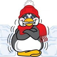 shivering penguin